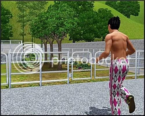 mmm fences