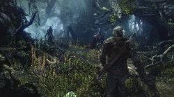 The Witcher 3: Wild Hunt (v.1.06 + 10 DLC)