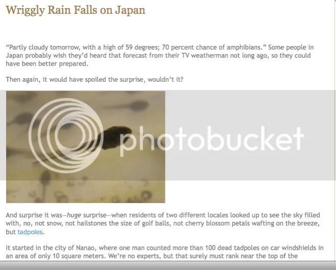 ew,wiggly,rain,japanese
