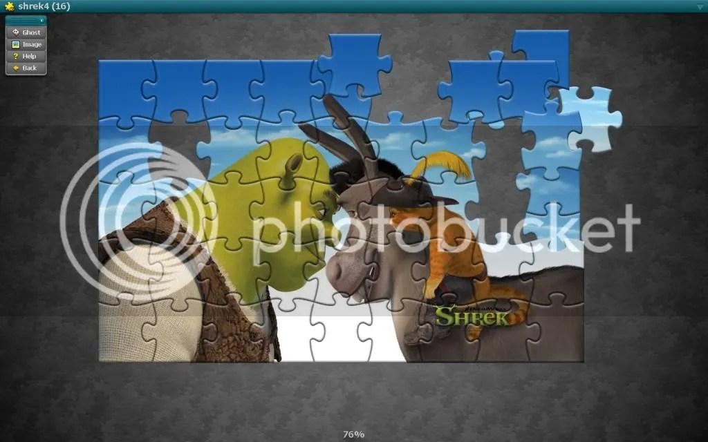 puzzle dincopilarie