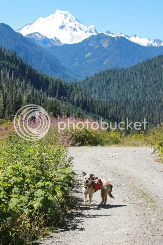 Hike to Twin Lakes