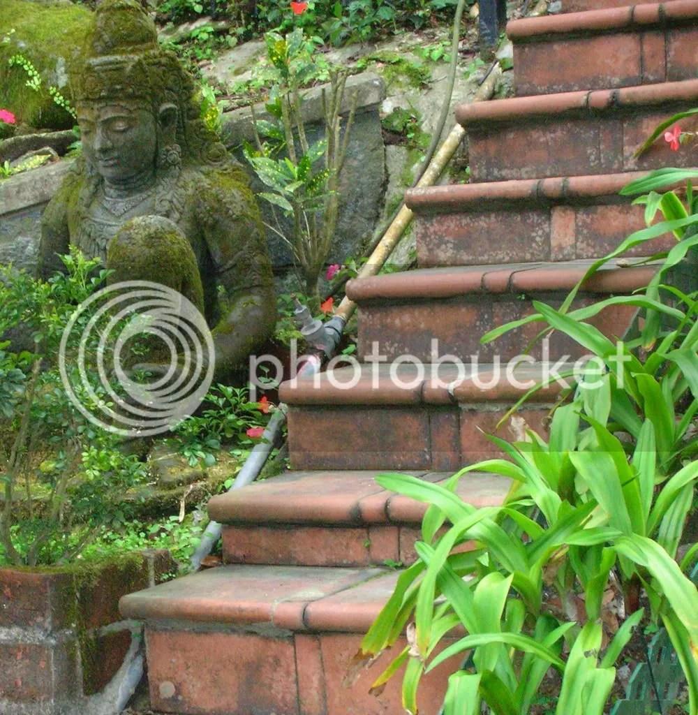 Steps... up
