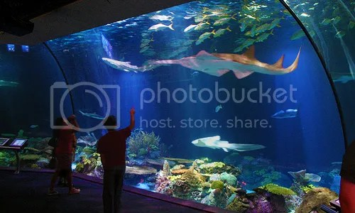 SeaWorld Indonesia, Jakarta, Indonesia