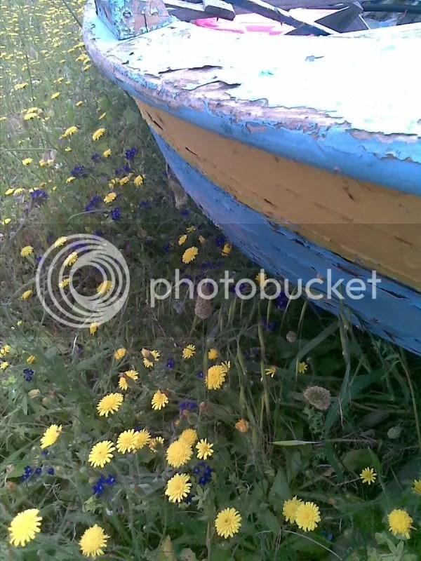 barca pista ciclabile siderno