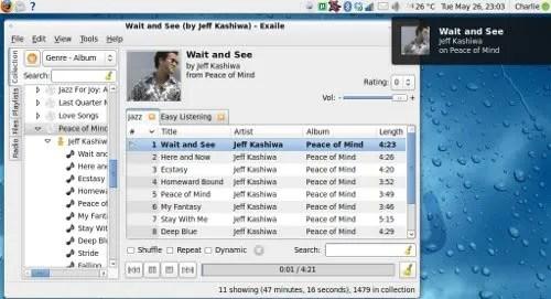 Tampilan Exaile pada Ubuntu