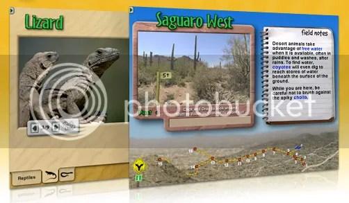 DigitalFrogDesert.png Digifrog Desert picture by homeschoolcrew