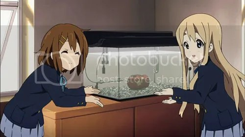 photo keion2_02_03_blog_import_529f08d95e014_zps6a8f5b04.jpg