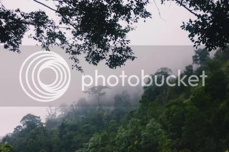 photo IMG_0019-1.jpg