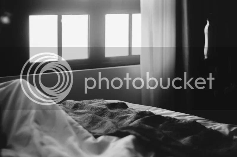 photo IMG_0240.jpg