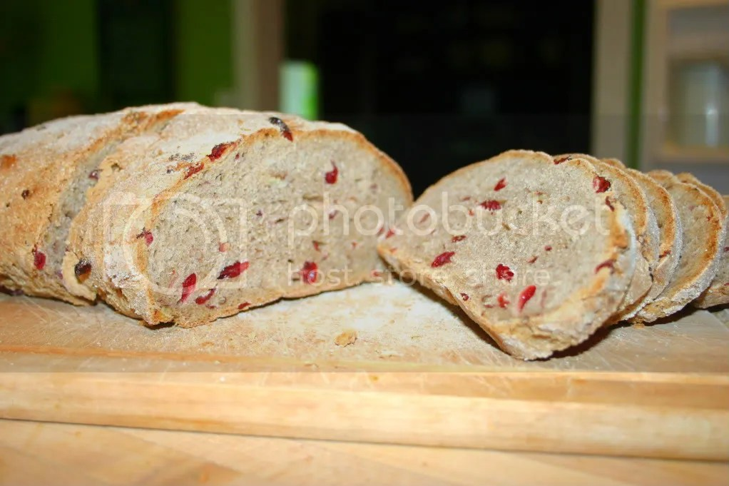 Cranberry Pecan Whole Wheat Bread