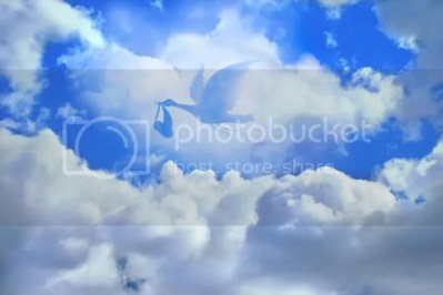 Stork with baby image set into clouds.