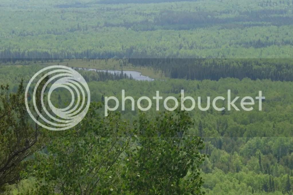 View of Cascade River (2009-06-20)