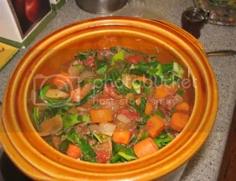 Beef Stew with Tomatoes, Turnips and Leeks