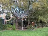 Texel playground