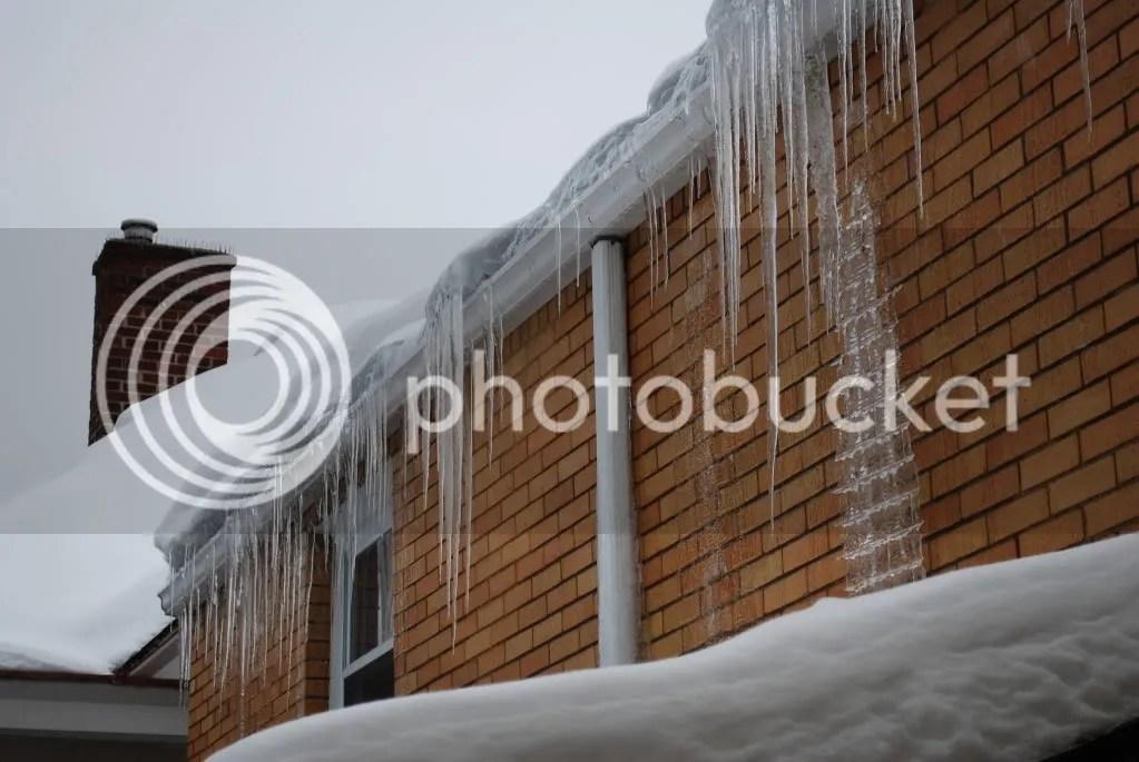 Crazy Ice Sculpture | DSC_0229.jpg