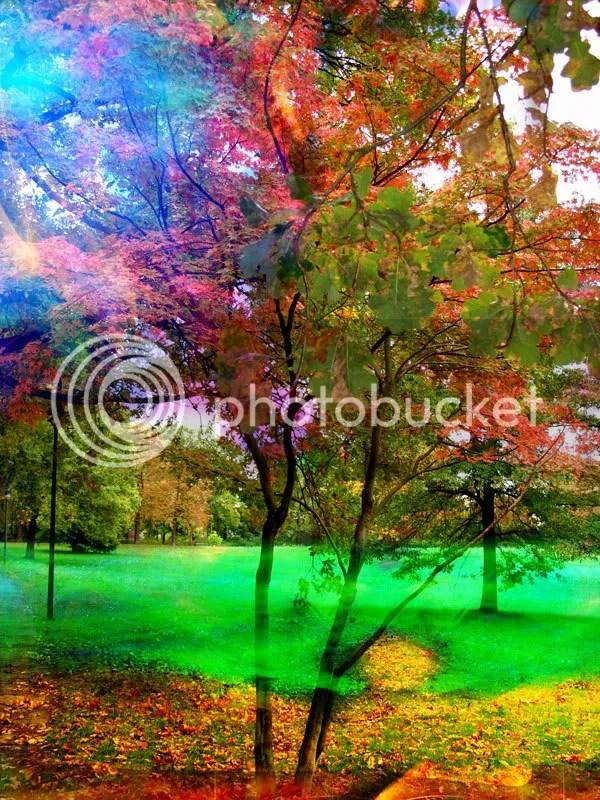 arbol-dorado1.jpg arbol dorado image by walter-trujillo