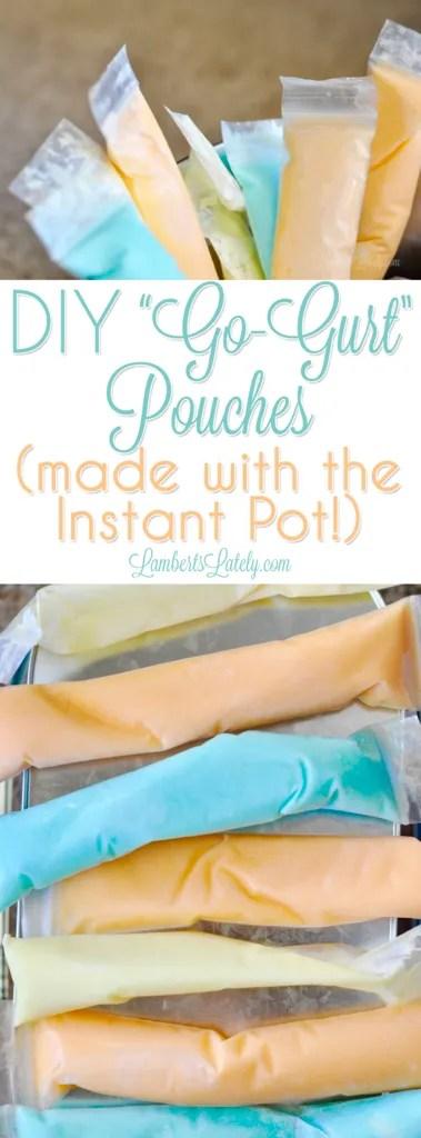How to make homemade DIY Go-Gurt pouches with your Instant Pot || yogurt sticks || kids snack recipes || snacks || ideas || gelatin || Jello || frozen || pressure cooking