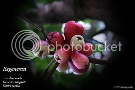 photo IMG_1035A1 Small_zps0lr9wkx2.jpg