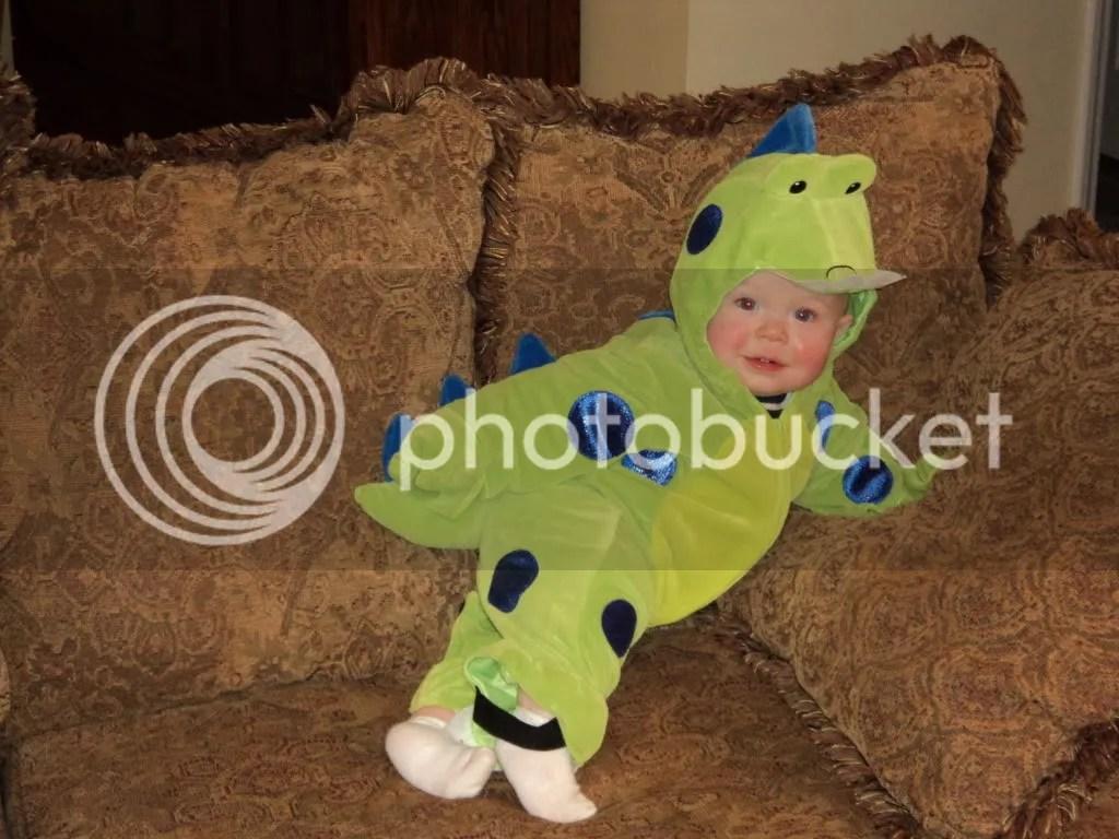 Cutest little Dinosaurus