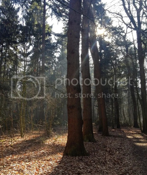 herfst, tag, autumn, lifewithanchors