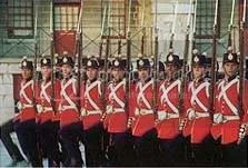 Fort Henry Guard