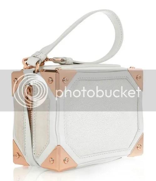 Alexander Wang Suitcase Bag
