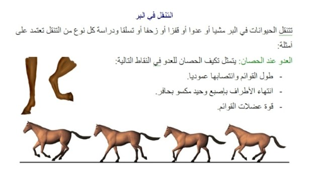 1113 - بحث حول التنقل عند الحيوان: تصنيف الحيوانات حسب وسط التنقل سنة ثالثة اساسي