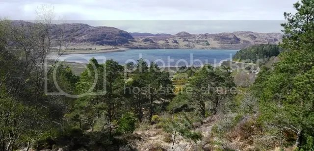 Loch Ewe from the Pinewood Trail
