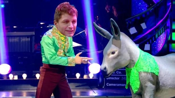 Hi donkey!