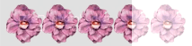 photo 35FlowerRating_zps8ff454b1.png