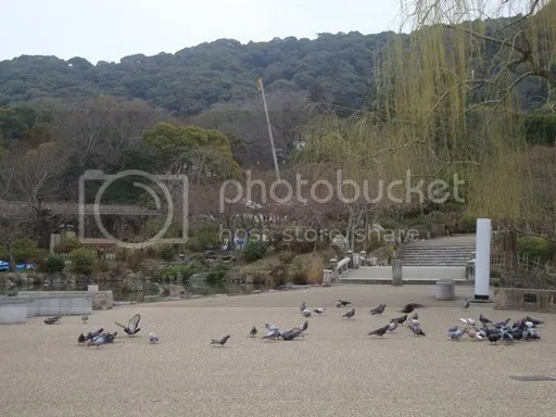 photo Maruyama Park_zpsb93oxrmd.jpg