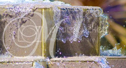 multiple sclerosis ms photography fountain water