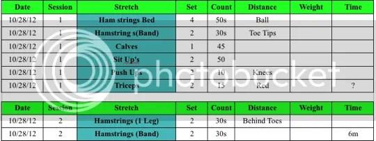 http://www.mattsms.com/2012/10/matts-multiple-sclerosis-exercise-logs.html