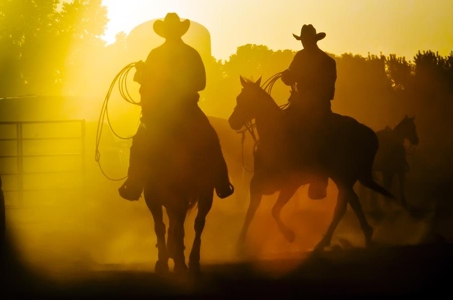 two rodeo competitors