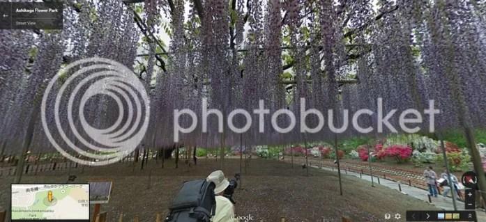 photo ahikagaflowerpark_googlemap3.jpg