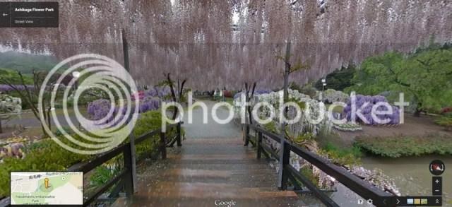 photo ahikagaflowerpark_googlemap4.jpg