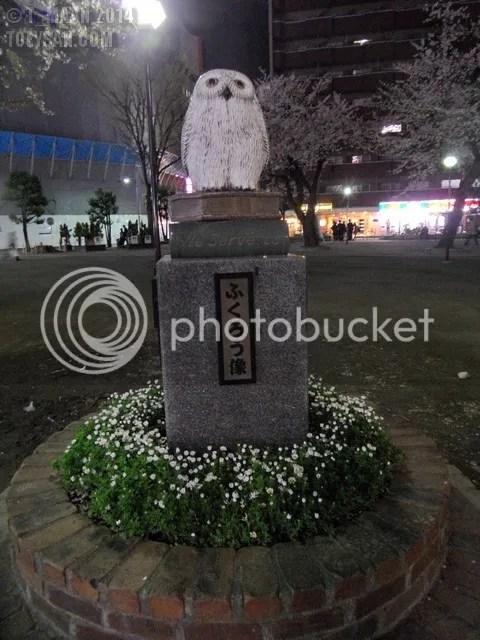photo SAM_3305.jpg