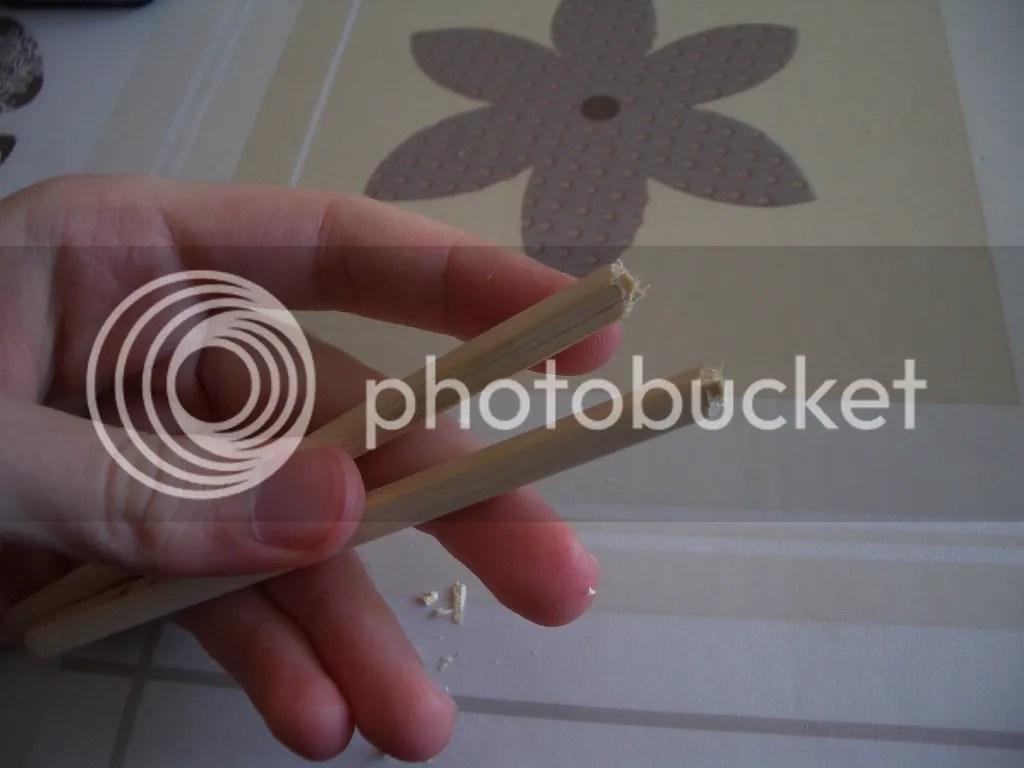 photo 4_zpsb04ced3c.jpg
