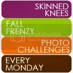 Fall Frenzy at Skinned Knees