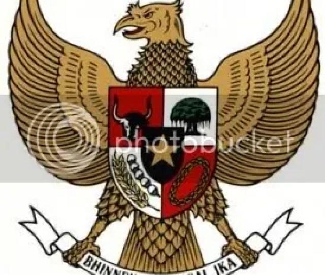 Nah Dimanakah Kita Bisa Melihat Burung Garuda Yang Asli Yang Terbang Mengep N Sayapnya Denganah Di Atasi Indonesia Apakah Burung Garuda Itu