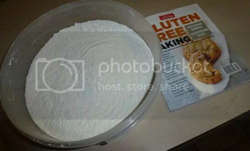Gluten Free Muffin Success