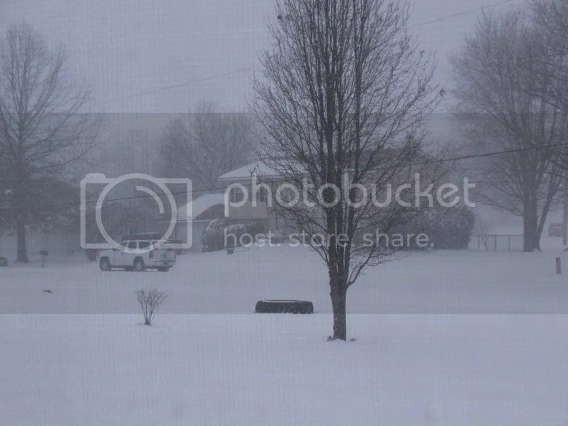 photo Snow2_zpsa16a7dd3.jpg