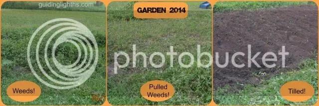 photo GardenCollage_zps4293f919.jpg
