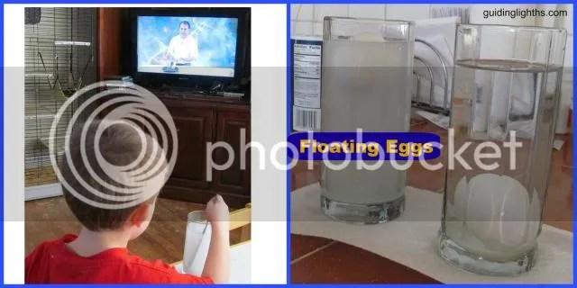 photo FloatingEggCollage_zpsfa19ac44.jpg