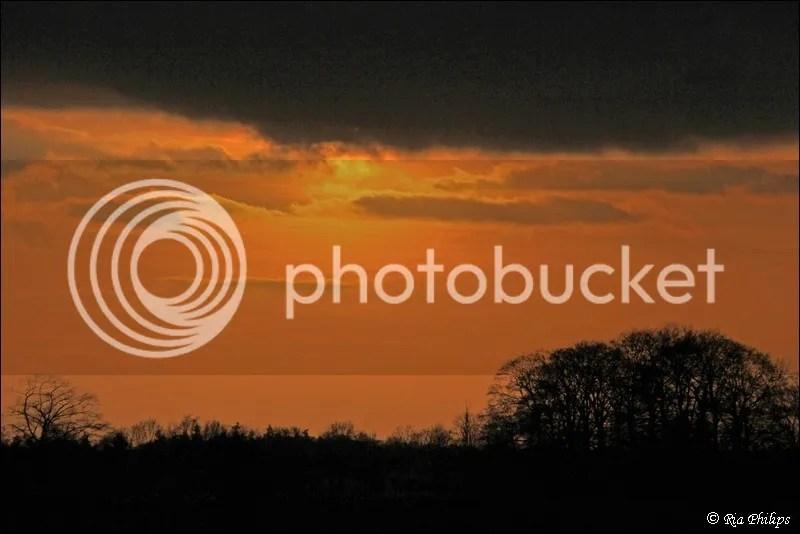 photo IMG_3928.jpg