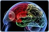 Brain injury lawyer,brain injuries,brain injury attorneys,traumatic brain injury symptoms,traumatic brain injuries rehabilitation