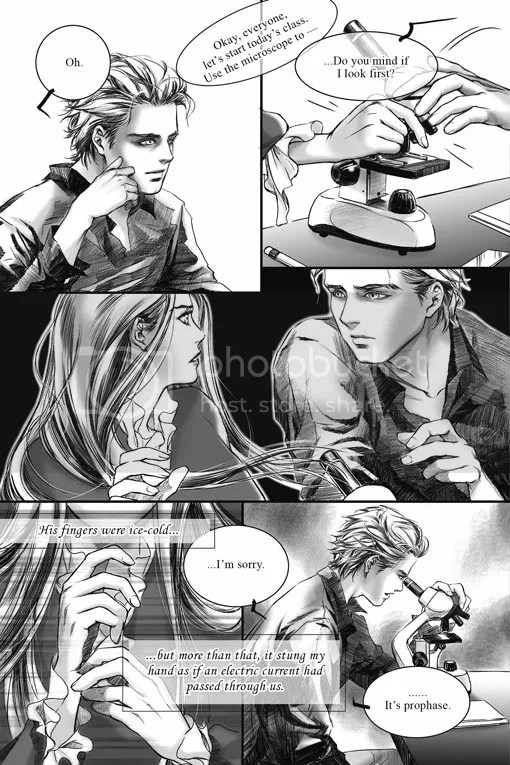 twilight graphic novel pag