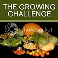 Growing Challenge