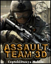 Assault Team 3D