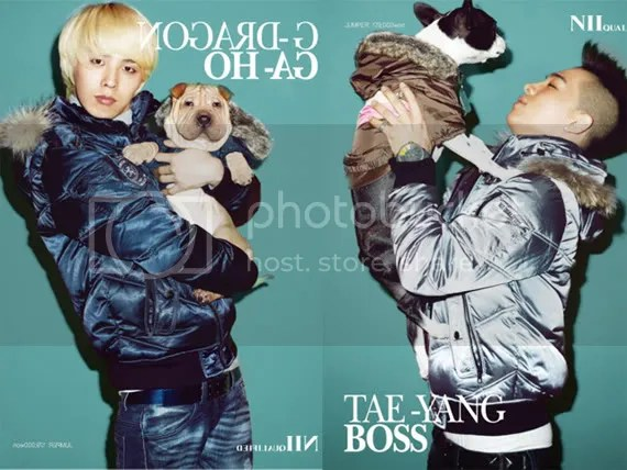 Image result for taeyang and his dog